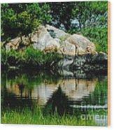 Pool In Marsh At Mystic Ct Wood Print