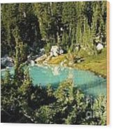 Pool In The Forest Wood Print