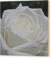Pope's Rose Wood Print