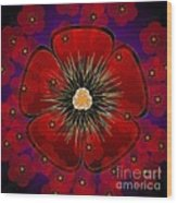 Poppies 2012 Wood Print