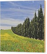 Poppies And Wild Flowers In Wheat Field Wood Print