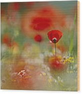 Poppies And Wildflowers In The Desert Wood Print by Annie Griffiths