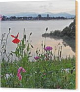 Poppies By The River Wood Print