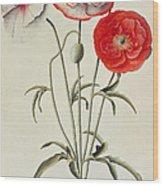 Poppies Corn Wood Print