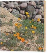 Poppies N River Rocks Wood Print