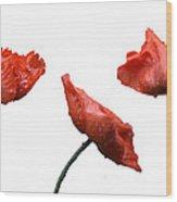 Poppies On White Wood Print