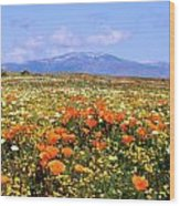 Poppies Over The Mountain Wood Print