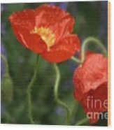 Poppies With Impressionist Effect Wood Print