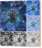 Poppy Blue - Macro Flowers Fine Art Photography Wood Print