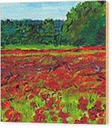 Poppy Fields Tuscany Wood Print