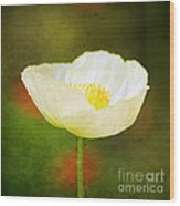 Poppy Of White Wood Print