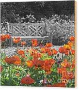 Poppy Seed Bench Wood Print