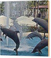 Porpoise Statues   Maui Hawaii Wood Print