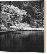 Portals Of The Past - Golden Gate Park Wood Print