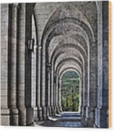Portico From The Valley Of The Fallen Wood Print by Mary Machare