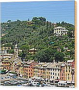 Portofino Hillside Wood Print