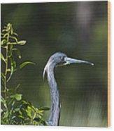 Portrait Of A Heron Wood Print