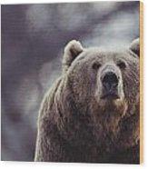 Portrait Of A Kodiak Brown Bear Wood Print