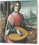Portrait Of A Young Man With A Lute Wood Print