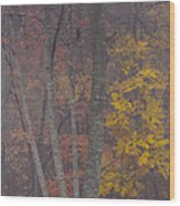 Portrait Of Autumn Wood Print