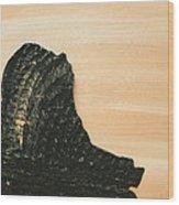 Portrait Variation In Beige - Willhelm Tell Wood Print