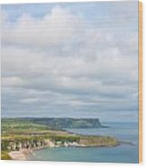Portrait View Of White Park Bay Wood Print