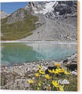Postcard From Alpes Wood Print
