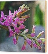 Posteredged Flowers Wood Print
