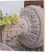 Pot Garden Ornament Wood Print