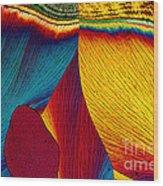 Potassium Nitrate Wood Print
