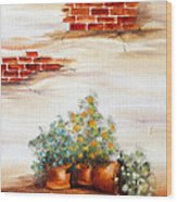 Potted Flowers Wood Print