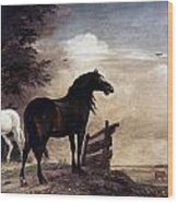 Potter: Horses, 1649 Wood Print