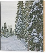 Powdery Snow Path Wood Print