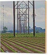 Power And Plants II Wood Print