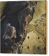 Power House Horse Wood Print