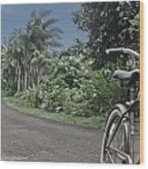 Power House Road Kauai Hawaii Wood Print