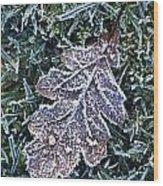Powerscourt Estate, County Wicklow Wood Print