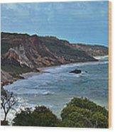 Praia De Tambaba - Paraiba Wood Print