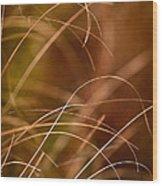 Prairie Grasses Number 4 Wood Print