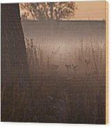 Prairie Pre Dawn Wood Print