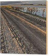 Prairie Road Storm Clouds Mud Tracks Wood Print