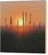 Prairie Sentinels Wood Print