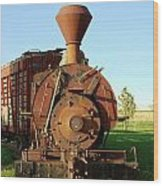 Prairie Train Wood Print