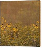 Prairie Wildflowers Wood Print