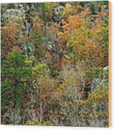 Prarie Hollow Gorge In Autumn Wood Print
