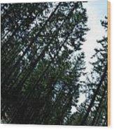 Pre Clear Cut Wood Print