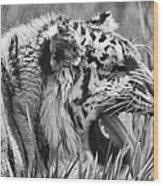 Predator Wood Print by Naman Imagery