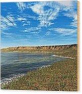 Prehistoric Coastal Landscape, Artwork Wood Print