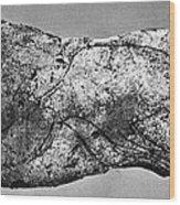 Prehistory: Engraving Wood Print