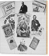 Presidential Campaigns Wood Print